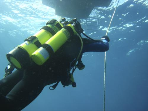 Exciting New Divemaster programs at Go Pro Costa Rica