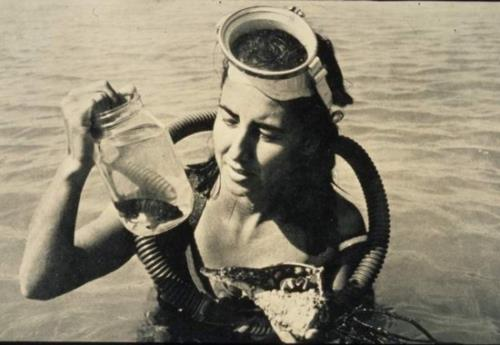 Amazing Women: The Shark Lady
