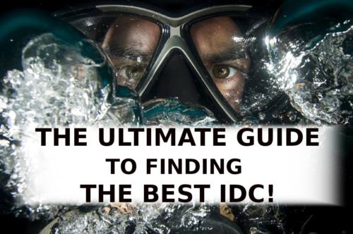 The Ultimate Guide to Finding The Best IDC!