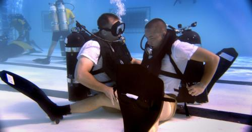 Can you name 5 dive organizations?