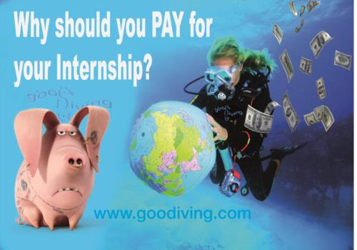 Why Should you PAY for your Internship?