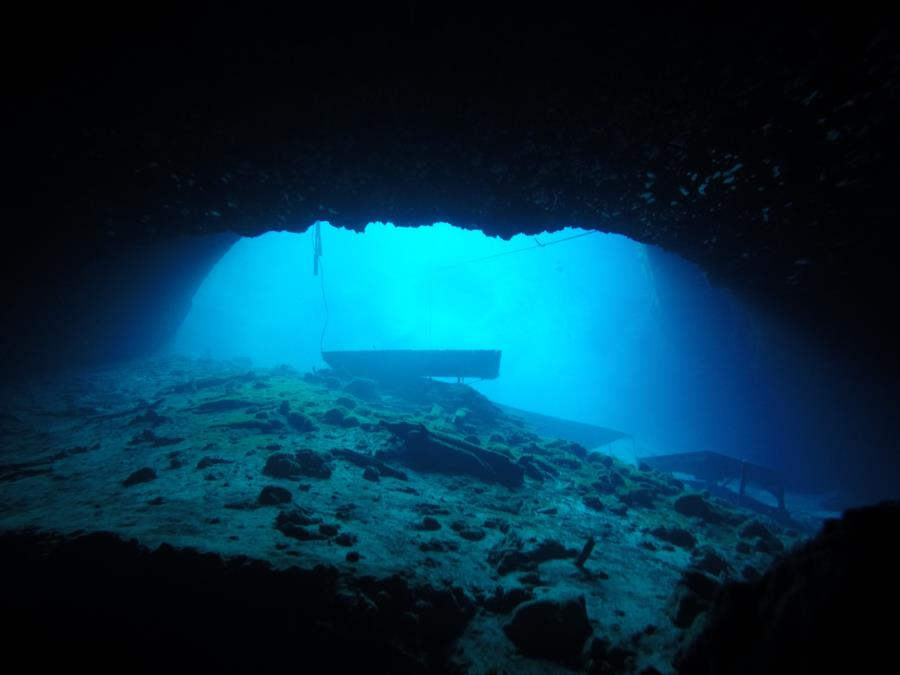 Blue Grotto Dive Resort - Looking up from the deep