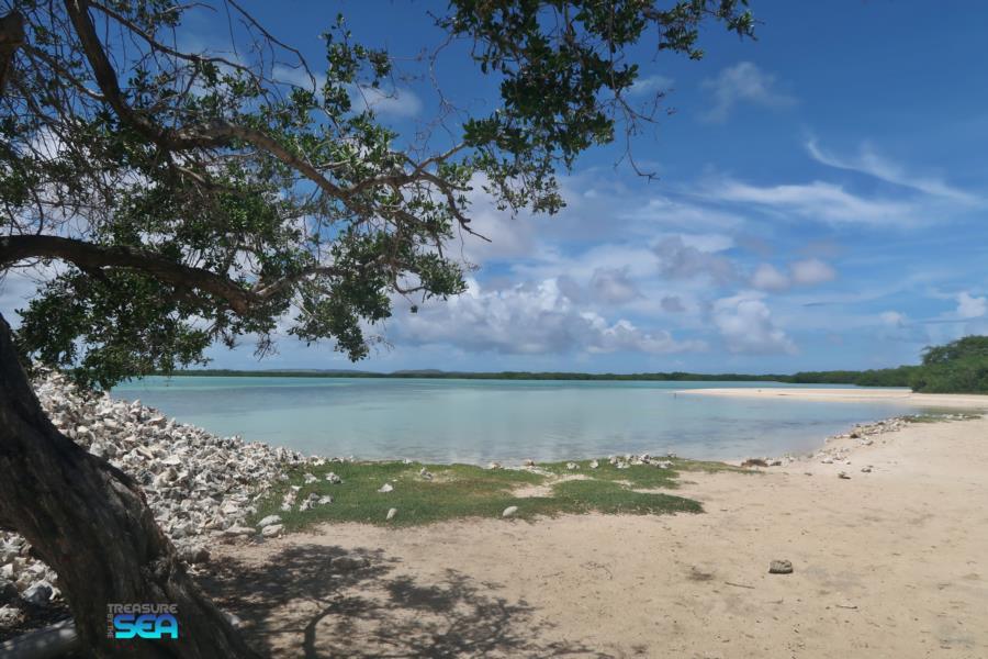 Lac Cai - Lac Cai Remora Treasure By The Sea Bonaire