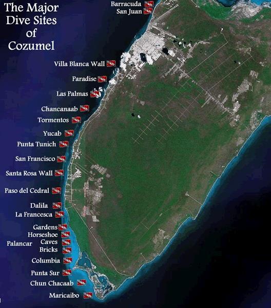 La francesa reef mexico - Cozumel dive sites ...