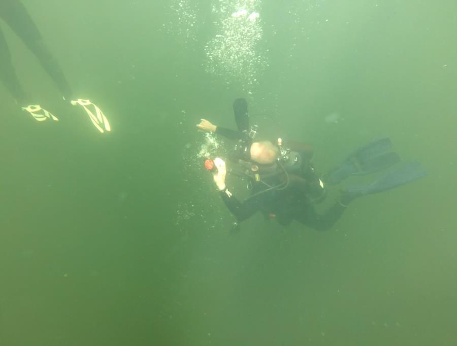Wheeler Branch Lake - 2
