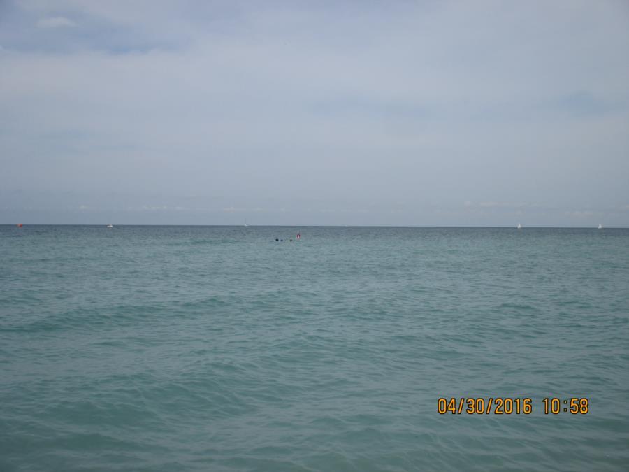 Venice Beach - Venice-Mick-1