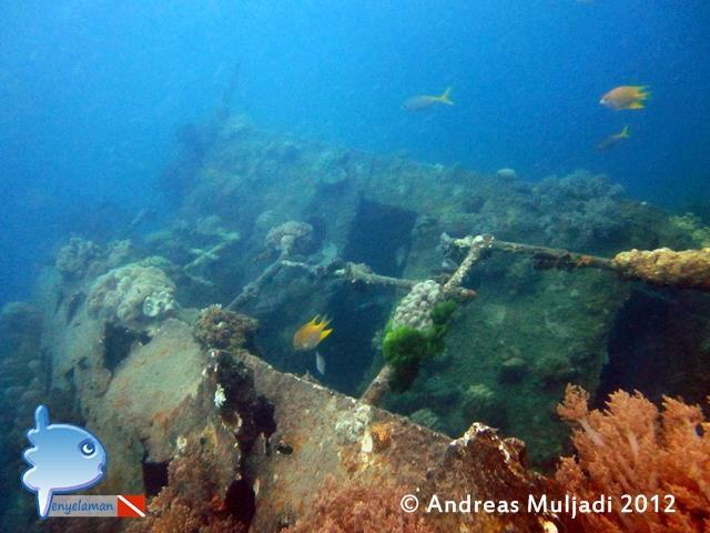 Kapal Indonur wreck aka Indonor - The Indonor