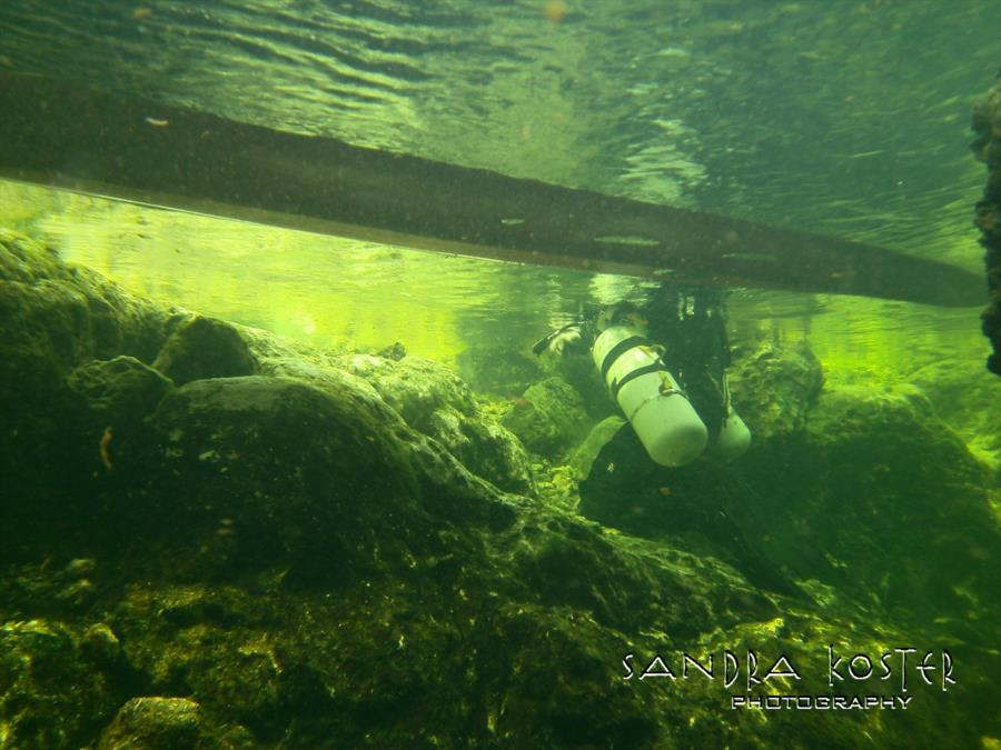 Lineater Spring - A view of the side bank where divers gear up/down.