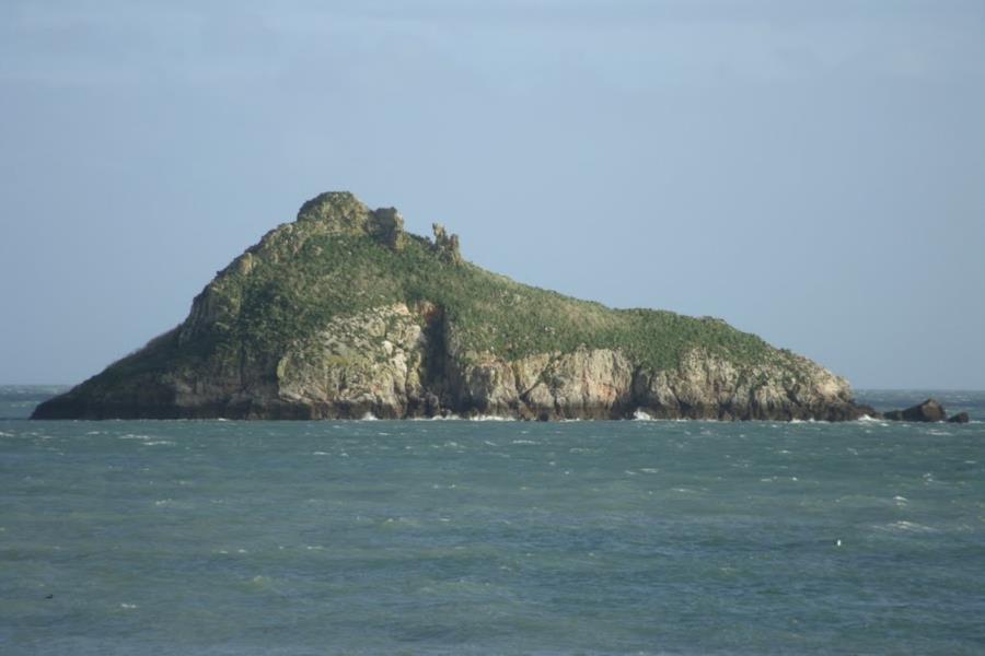 Beacon Cove - Rock