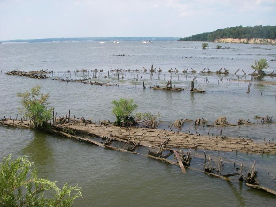Mallows Bay Ghost Fleet - Wrecks at Mallows shallows