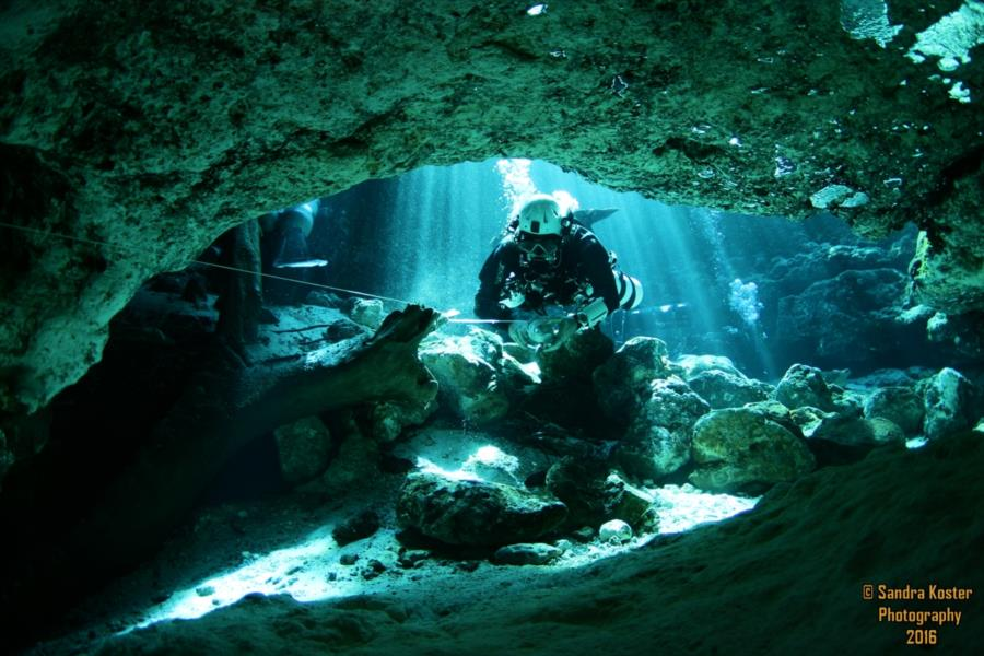 Ginnie Springs - Entering the Eye