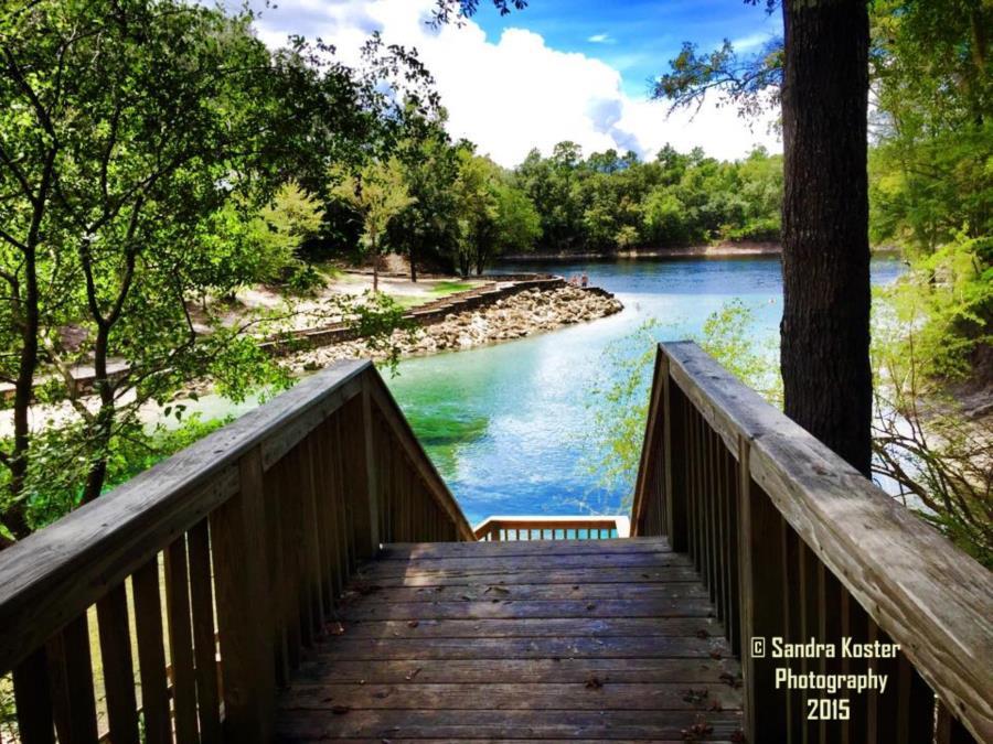 Little River Springs - Little River from main steps 2015