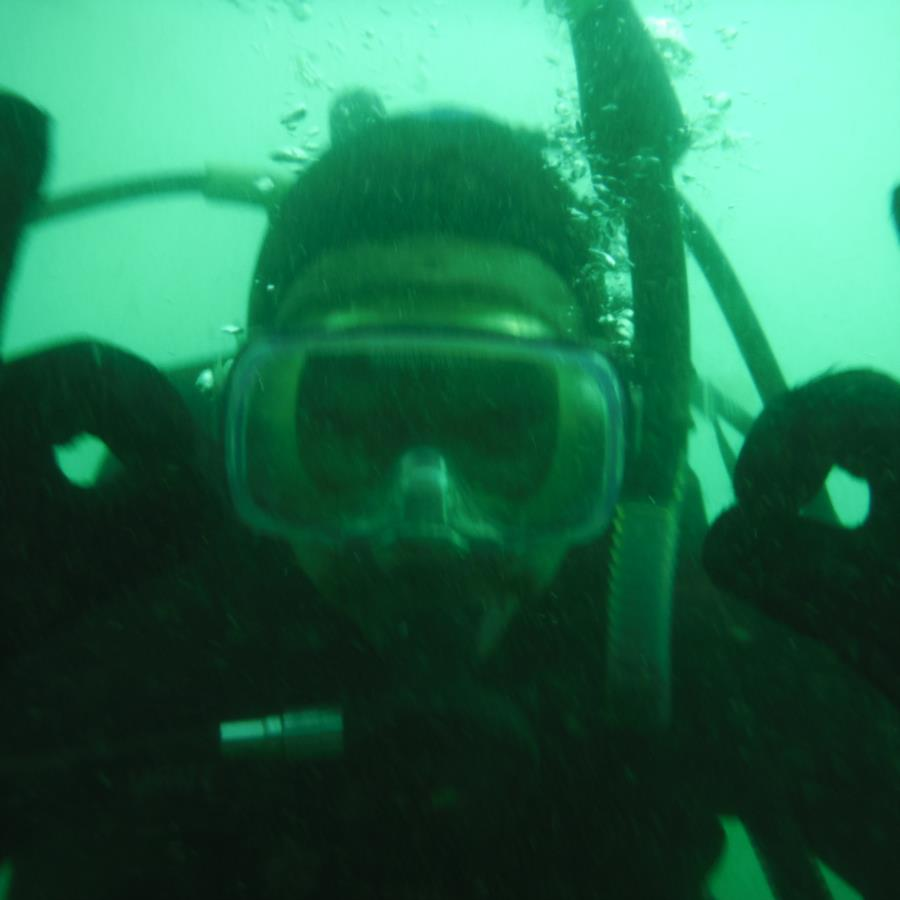 Breakwater Cove - My Buddy