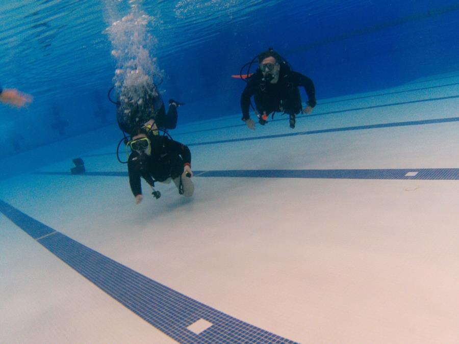 Autistic Diver