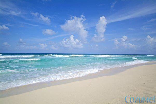 Sand 2 Sea Adventures Profile Photo