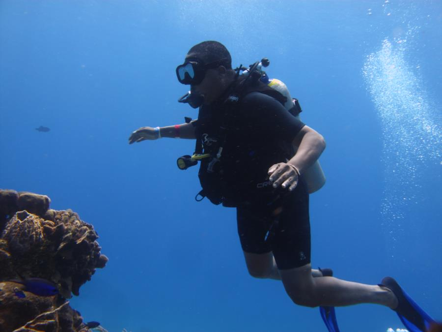 Cozumel Dive at 80 feet
