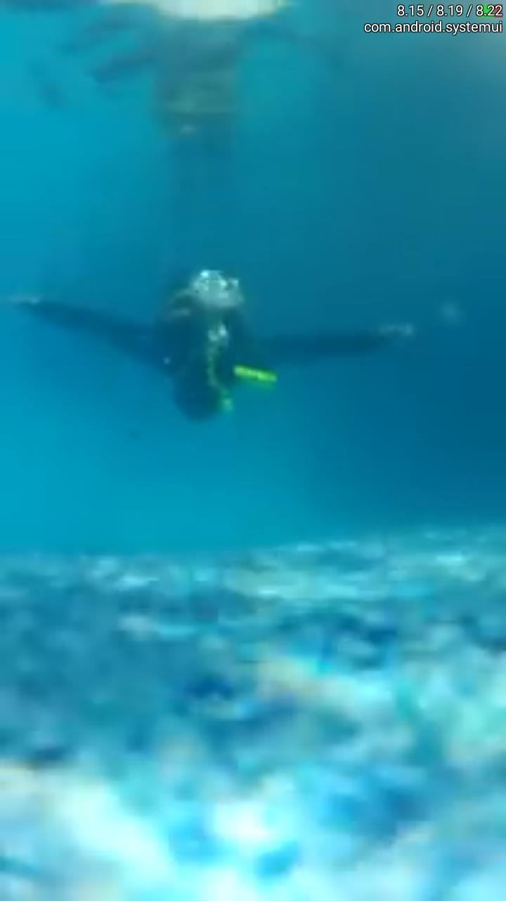 Scuba Yoga with SparAir