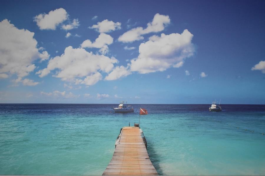 Go West Diving Westpunt Curacao
