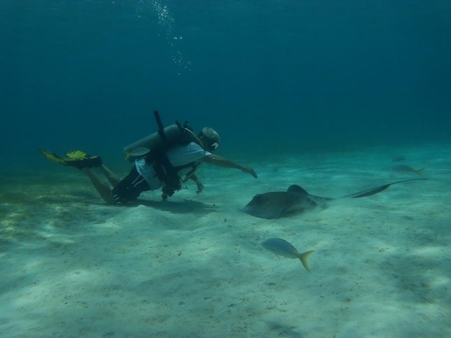 Playing with the locals in Grand Cayman