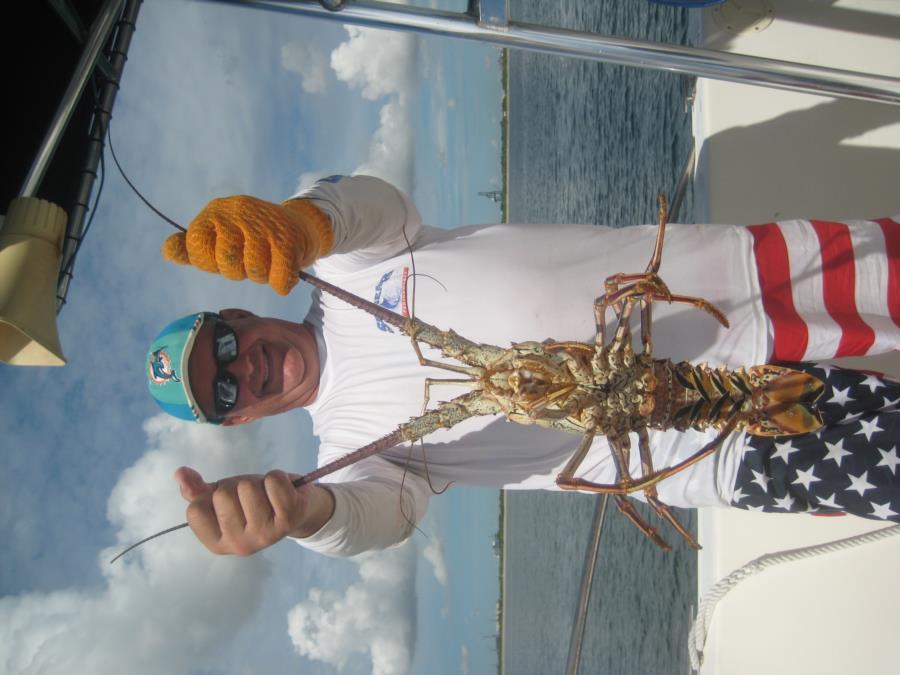 Lobster 3 Lbs 9.28.16