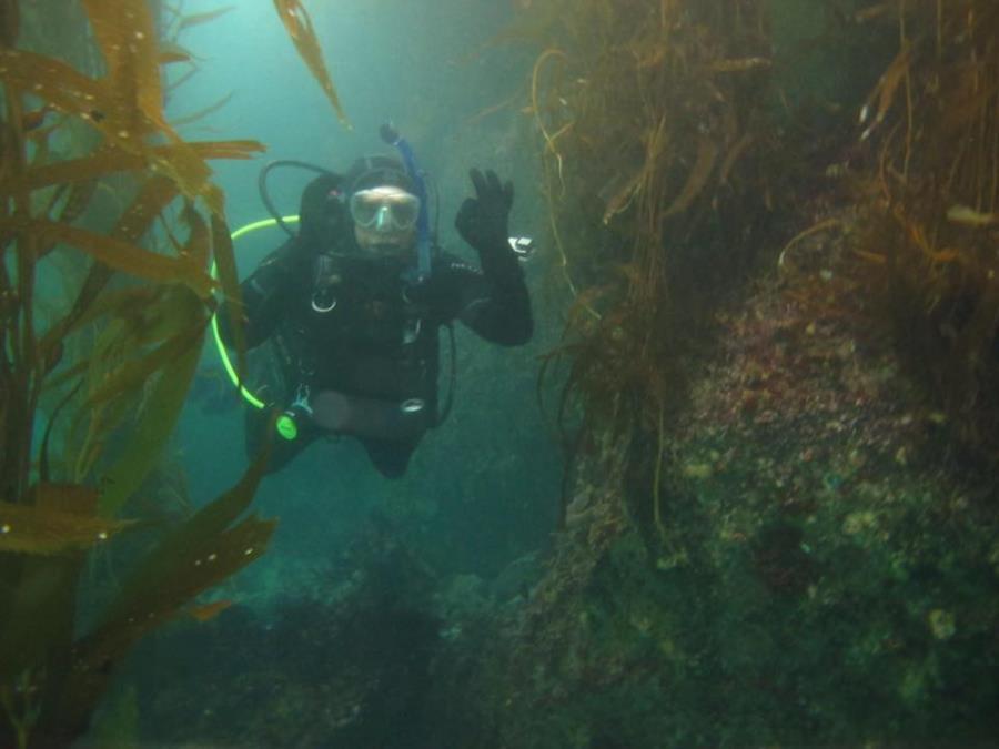 Breakwater Monterey