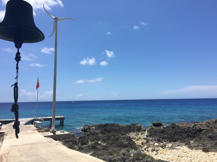 Narcoholics at Grand Cayman