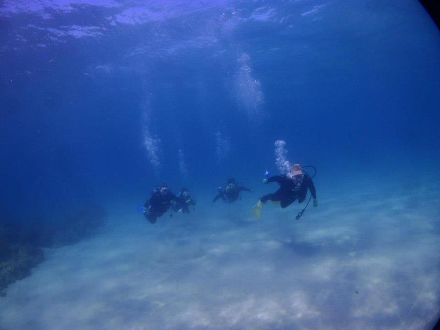 Yakushima Dive 2