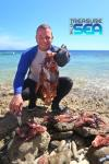 Hunting lionfish at Playa Frans, Bonaire