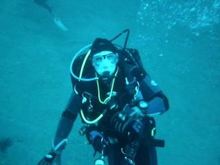 Why Dive Discovery...