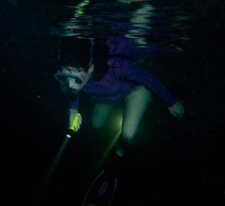 Night Snorkeling - Discover the Wonders of Snorkeling at Night