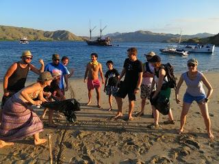 Shark Education Liveaboard in Komodo!!!