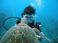 Awesome Maui Dive Trip
