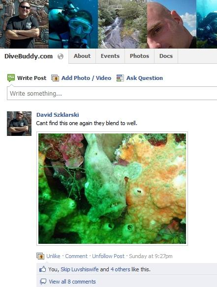 Top Scuba Diving Groups on Facebook