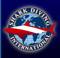 Shark Diving International at Our World-Underwater