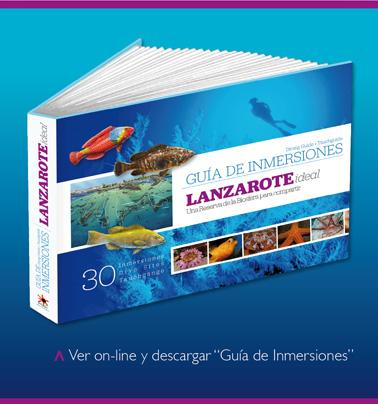 Fabulous Free Dive Guide For Lanzarote