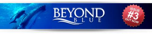Beyond Blue issue 3 is now available