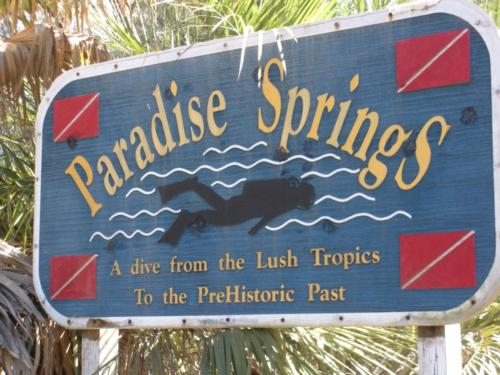 Paradise Spings, Ocala, Fl 26 Feb 2010