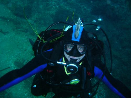 First Blog in a long time (2 short dive trips)