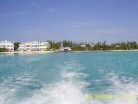 Nassau, Bahamas  Shark Dive 1/15/2008