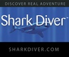 Shark  from San Francisco CA | Charter Service