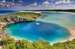 Top Bahamas Dive Sites for 2012