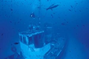 Top New Jersey Dive Sites for 2012
