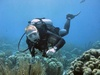 Bill from Jacksonville NC | Scuba Diver