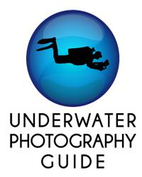 Great Resource for Underwater Photography