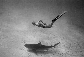 Shark Warrior Lesley Rochat was here!