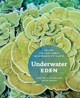 Underwater Eden: new book explores the Phoenix Island Protected Area