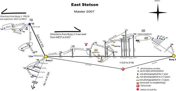 Stetson Bank (Texas Flower Gardens)   Stetson / Flower Garden Map