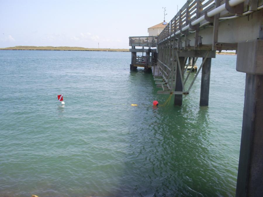 Port aransas jetties port aransas tx for Port aransas jetty fishing report