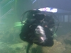 Me and My Buddy ( The Wolf Eel )