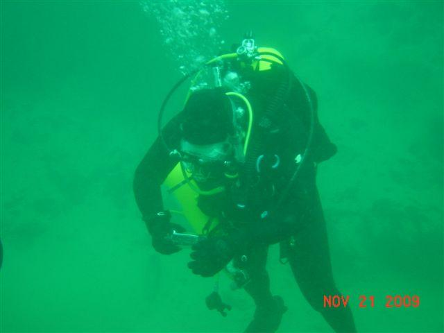 just diving